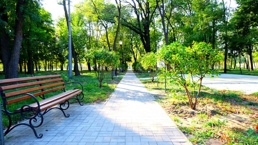 Сад Бернацкого после реконструкции
